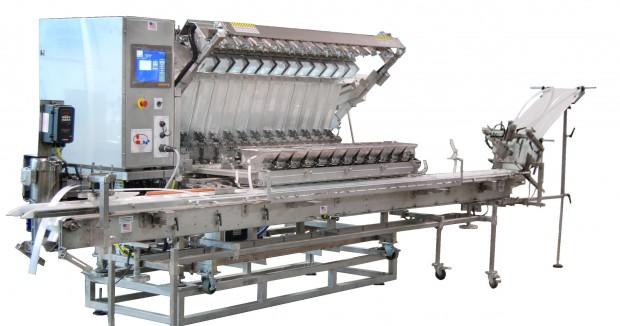Nowa maszyna dla producentów borówek. Amerykańska firma planuje rozwój w Polsce