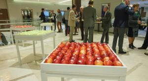 Nie da się wyprodukować jabłek bez pozostałości pestycydów