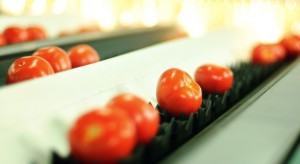 Citronex: Pomidory z Bogatyni już dostępne w sklepach sieci Biedronka