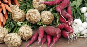 Jakie choroby występują w uprawie warzyw korzeniowych?