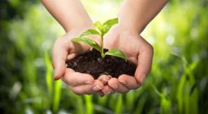 Rośnie unijna produkcja ekologiczna