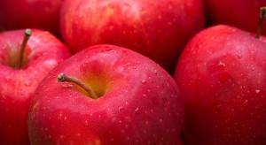 Zapasy jabłek Gala w Polsce zmniejszyły się o ponad połowę