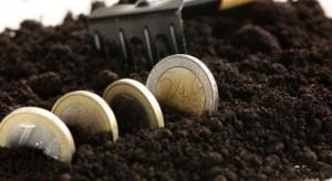 ARiMR: Zarzuty dla pięciu osób za wyłudzenie 190 mln zł na uprawę warzyw