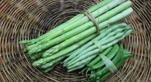 Drożeją szparagi, spada cena fasolki szparagowej. Analiza cen na Broniszach
