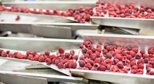 Duża ilość przetwórni wzmaga polsko-polską konkurencję na rynku surowców