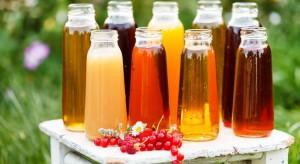 Czy mało znane owoce mogą stanowić cenne komponenty nektarów?