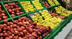 Ceny jabłek w sieciach handlowych oscylują między 2,26-4,49 zł/kg