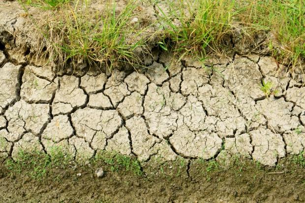 Zagrożenie suszą minęło?