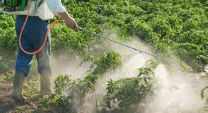 Wpływ nawożenia dolistnego na jakość przechowalniczą warzyw