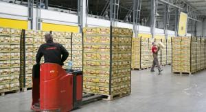 Citronex buduje bananowo-pomidorową potęgę. Inwestuje w nowe dojrzewalnie i szklarnie
