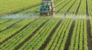 Nowoczesne rolnictwo może iść w parze z bioróżnorodnością?