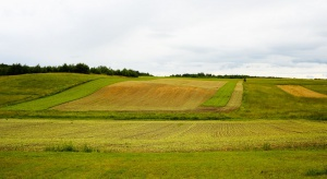 KRIR: Ustawa o ustroju rolnym powinna być jak najszybciej podpisana