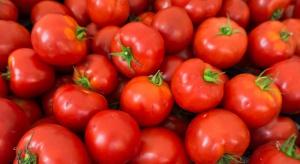 Naukowcy znaleźli sposób na poprawę smaku pomidorów