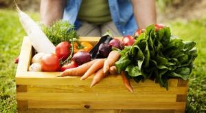 Polska w czołówce producentów żywności organicznej w UE