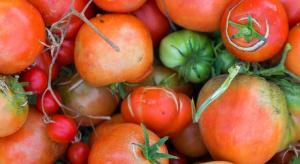 Co zrobić z brzydkimi owocami i warzywami? Sprzedać!