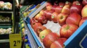 Ceny jabłek w sieciach handlowych dochodzą do 4,49 zł/kg