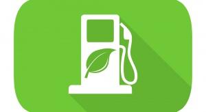 Odpady z winogron dobrym surowcem do produkcji biopaliw?