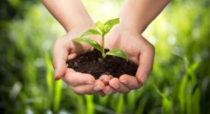 Spadła liczba gospodarstw ekologicznych w Polsce, wrosła - przetwórni