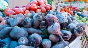 GUS: Susza wpłynie na wielkość zbiorów ziemniaków, owoców i warzyw