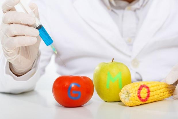 KE przeciwna przepisom w sprawie sprzedaży i stosowania GMO