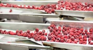 Niska podaż mrożonych malin z Polski wpłynęła na wysokie ceny