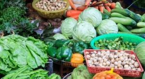 W Polsce marnowanych jest około 9 mln ton żywności rocznie