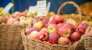 Ukraińskie jabłka są jednymi z najtańszych w Europie Wschodniej