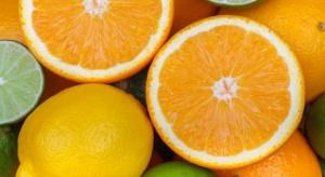 Hiszpania: Producenci cytrusów domagają się lepszej ochrony fitosanitarnej