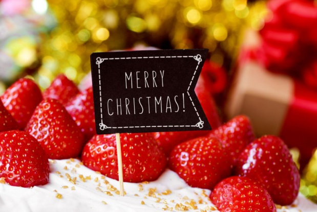 Redakcja serwisu www.sadyogrody.pl życzy wszystkim wesołych świąt