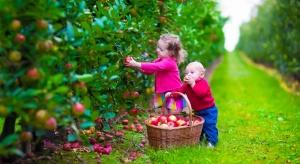 Od nowego roku 1000 zł na dziecko również dla rolników