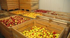 Co przyniesie nowy rok branży sadowniczej?