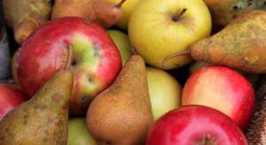 WAPA: Mniej jabłek w unijnych magazynach w grudniu, więcej - gruszek