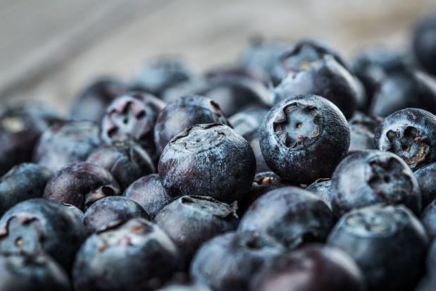 Jak przechowywać owoce borówki, aby wydłużyć okres ich podaży na rynku?
