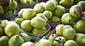 Stany Zjednoczone zwiększają dostawy gruszek na rynek chiński