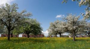 W Polsce przeważają małe gospodarstwa