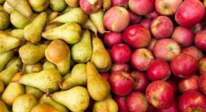 Mniej zapasów jabłek i gruszek w USA