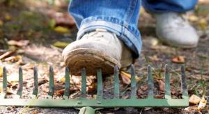 Wypadki rolnicze w gospodarstwach sadowniczo-ogrodniczych. Kiedy można liczyć na odszkodowanie?