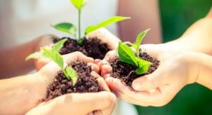 BASF coraz więcej inwestuje w badania nad ochroną roślin