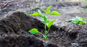 Komisja Europejska zamierza promować nawozy organiczne