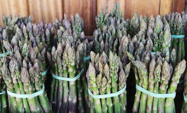 Polscy producenci szparagów spodziewają się mniejszych zbiorów i wzrostu cen