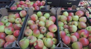 W Rosji zniszczono 22 tony jabłek. Tym razem z Ukrainy