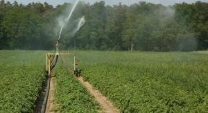 KRIR: Wysokie stawki za wodę mogą doprowadzić do bankructw gospodarstw