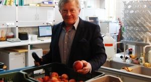 Prof. Tomala, SGGW: W przechowalniach znajduje się zbyt dużo jabłek słabej jakości