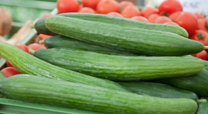 Ukraina: Warzywa szklarniowe tańsze o 50 proc. niż przed rokiem