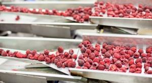 Obowiązkowe umowy kontraktacyjne rozwiążą problemy na rynku owoców?
