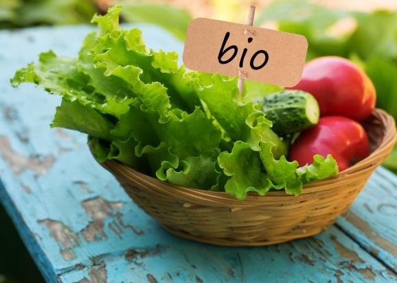 Eko-producenci tworzą Polską Izbę Żywności Ekologicznej