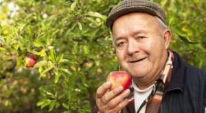 KRUS podał wymiar składek na ubezpieczenie społeczne rolników za III kw. 2016 r.