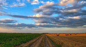 Na początku lipca zaplanowano prace nad nowelizacją ustawy o sprzedaży ziemi