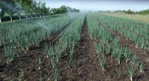 Prawo wodne: Najbardziej złagodzono planowane podwyżki dla rolników