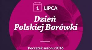 Polacy, możecie być dumni z plantatorów borówki! (video)